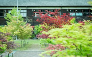 「奈良カエデの郷 ひらら」にてランドセルの展示会を開催しました!
