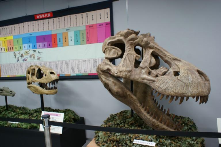 【鞄工房山本 銀座店】見て、触って、遊びながら学ぼう!「わくわく恐竜ランド」に行きました