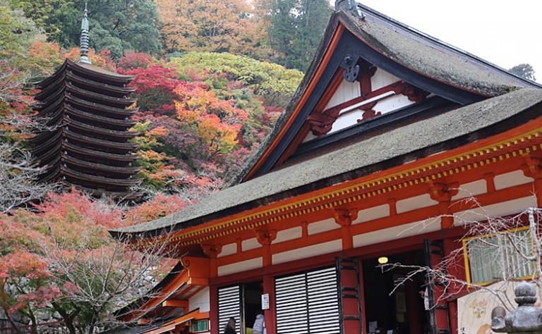行楽シーズンのおでかけにぜひ! 風光明媚な「談山神社」