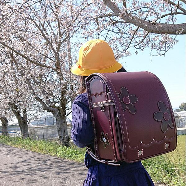熊本県熊本市/O・Sちゃん