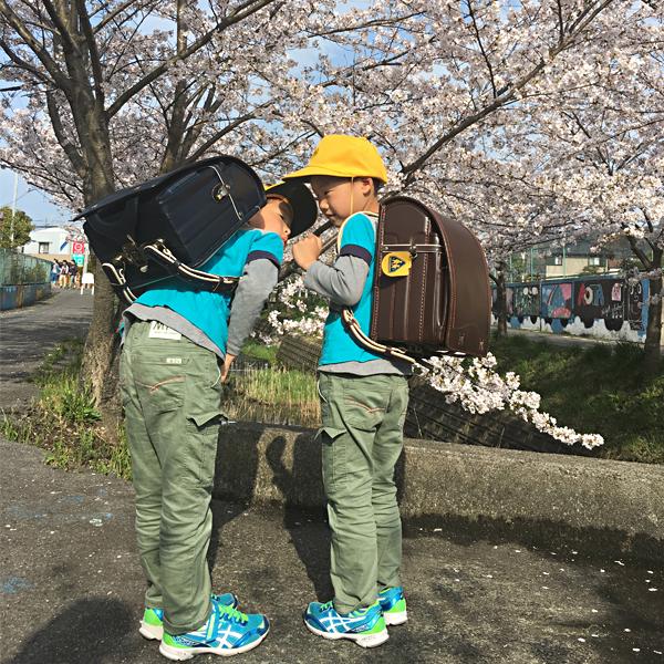 愛知県額田郡//N・Hくん/N・Tくん